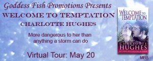 MBB_TourBanner_WelcomeToTemptation copy