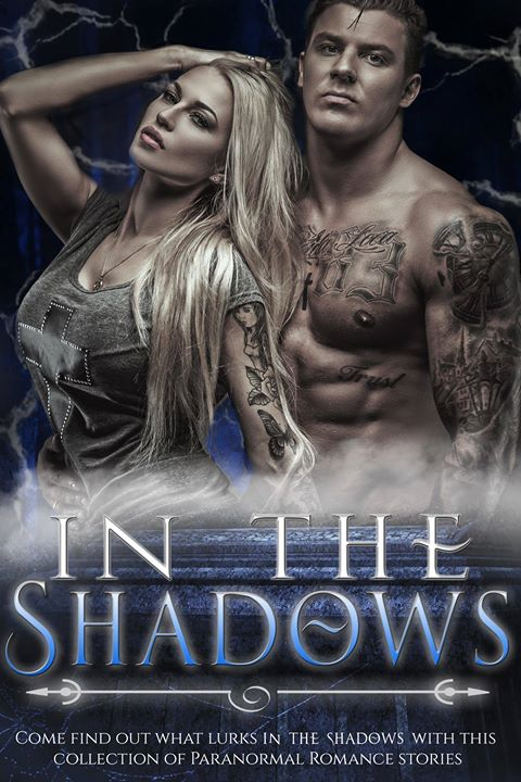 In the Shadows flat cover
