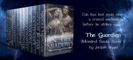 in-the-shadows-jacquie-biggar-2