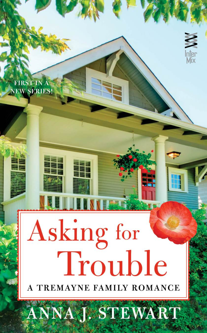 MediaKit_BookCover_AskingForTrouble