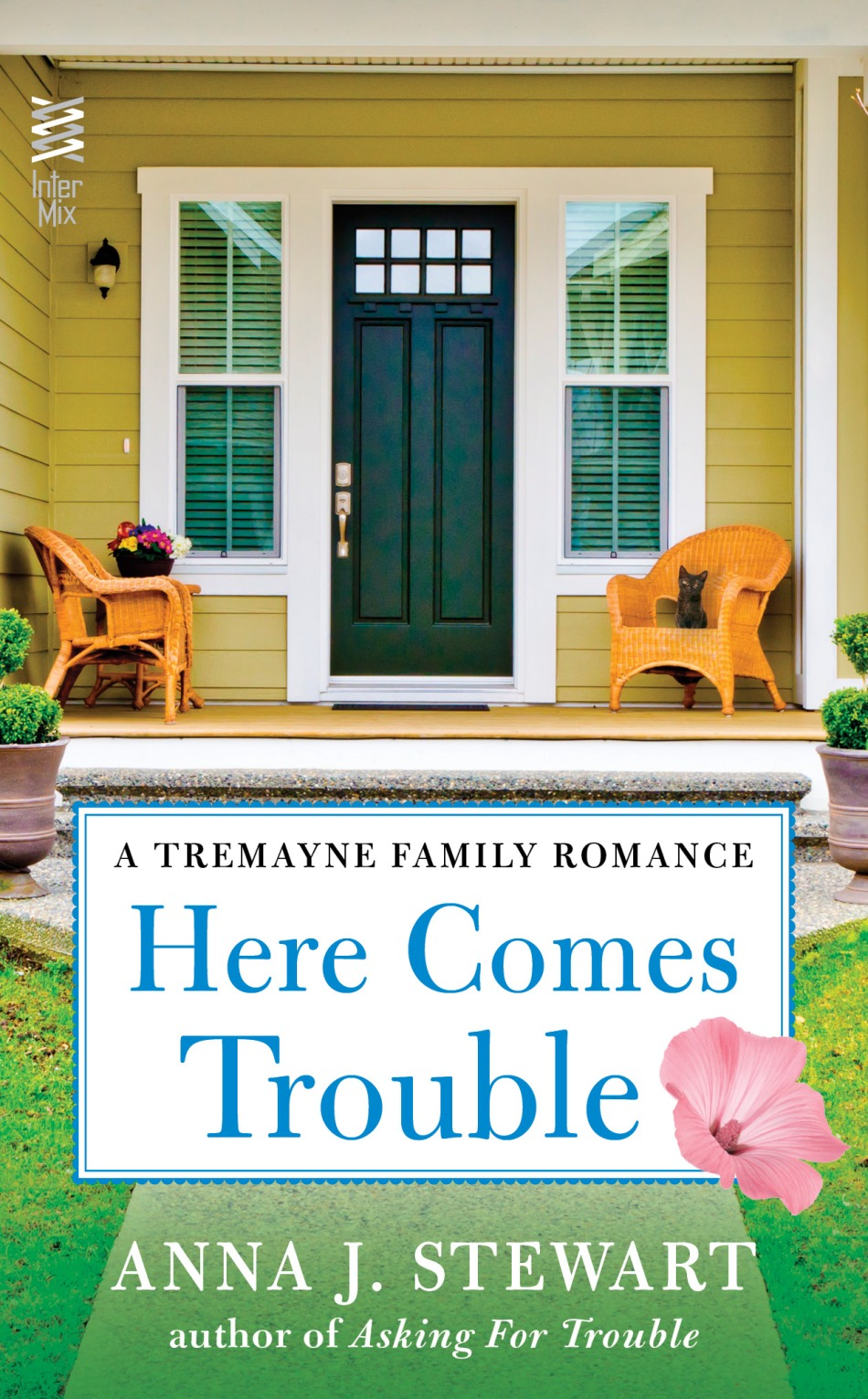 MediaKit_BookCover_HereComesTrouble