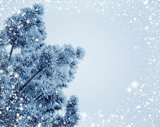 snow-1088470_640