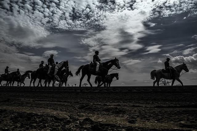 horse-race-1507078_640