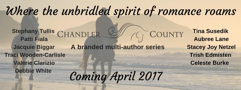 chandler-county-banner