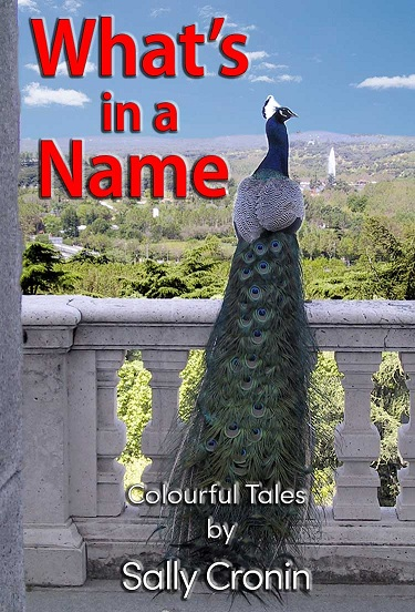 Book Cover for What's in a Name by Sally Cronin