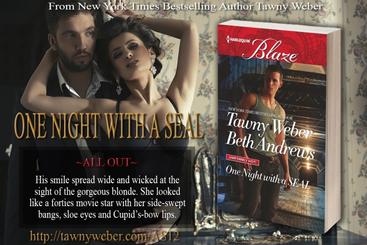 Two SEAL brothers. Endless sexy possibilities! One Night With A SEAL @TawnyWeber #Romance #HotReads @Barclay_PR