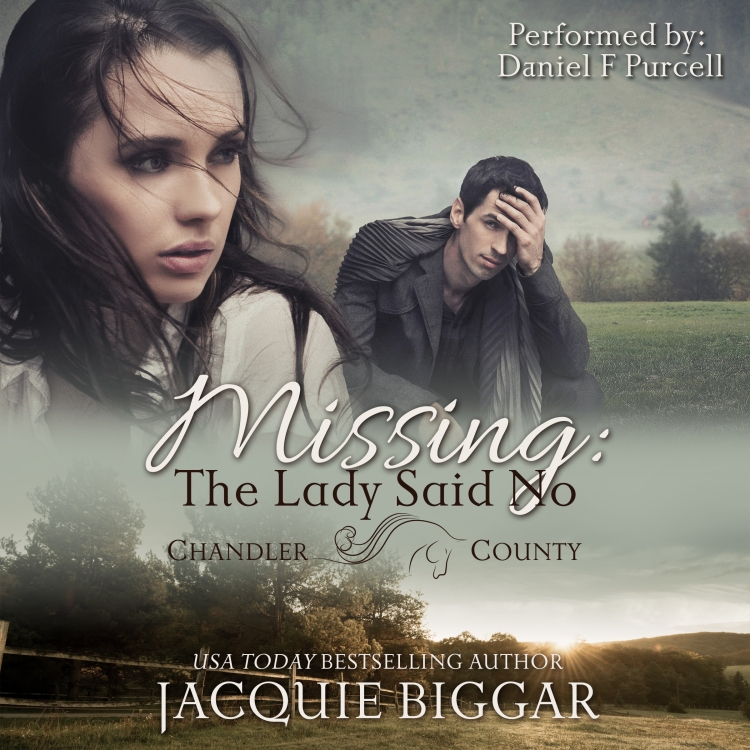 Missing The Lady Said No audio cover