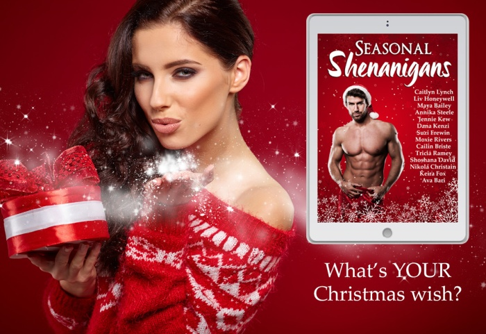 Sensual Stories for the Holidays… Seasonal Shenanigans #BoxSet#HolidayRomance