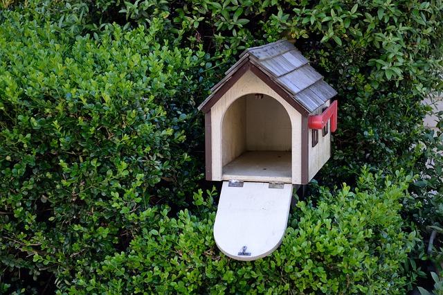 bird-house-2727658_640