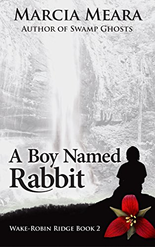 A Boy Named Rabbit by @MarciaMeara #BookReview#Suspense