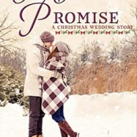 Our Christmas Promise by @TaraRandel #HolidayRomance #Reading @PrismBookTours