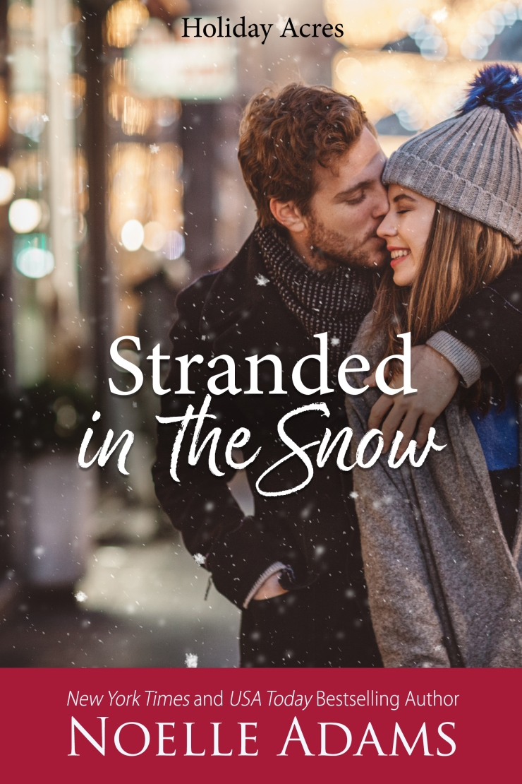 Stranded in the Snow2