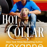 Hot Under the Collar by @RoxanneStClair #CoverReveal #Romance @InkSlingerPR