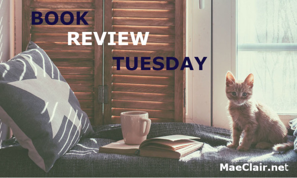 Warm and cozy window seat with cushions and a opened book, light through vintage shutters, rustic style home decor. Small cat on window seat, along with coffee cup by pillow, Words Book Review Tuesday superimposed over image
