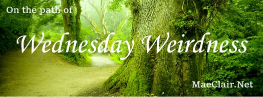 """pathway between large, gnarled trees with words """"on the path of Wednesday Weirdness"""" superimposed over image"""