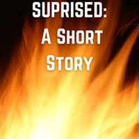 #BookReview- I Wouldn't be Surprised by @DLFinnAuthor #Fantasy #Suspense